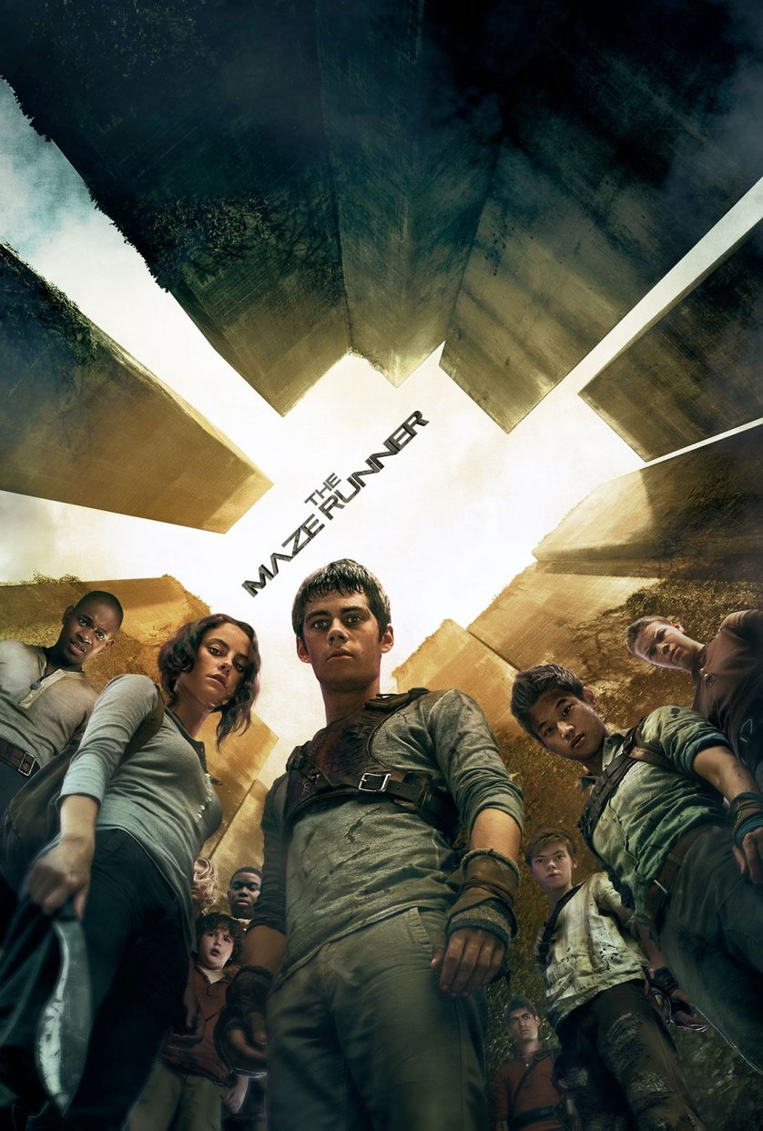 Maze Runner 1 - Die Auserwählten im Labyrinth: DVD oder