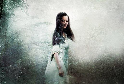 A Chinese Ghost Story - Die Dämonenkrieger