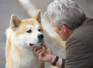 Hachiko trifft Richard Gere