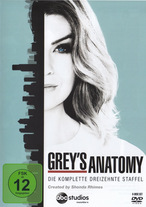 Grey's Anatomy - Staffel 13