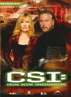 CSI: Las Vegas - Staffel 6