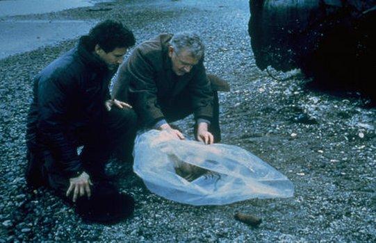 Das Geheimnis von Twin Peaks - Staffel 1