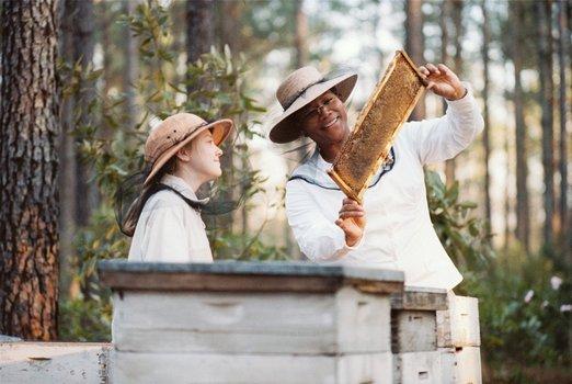 Die Bienenhüterin