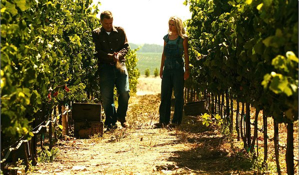 Bottle Shock - California Wine With Love