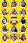 WWE Legends Chrome powered by EMP (Poster)