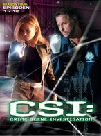 CSI: Las Vegas - Staffel 4