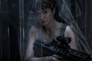 Katherine Waterston als Daniels