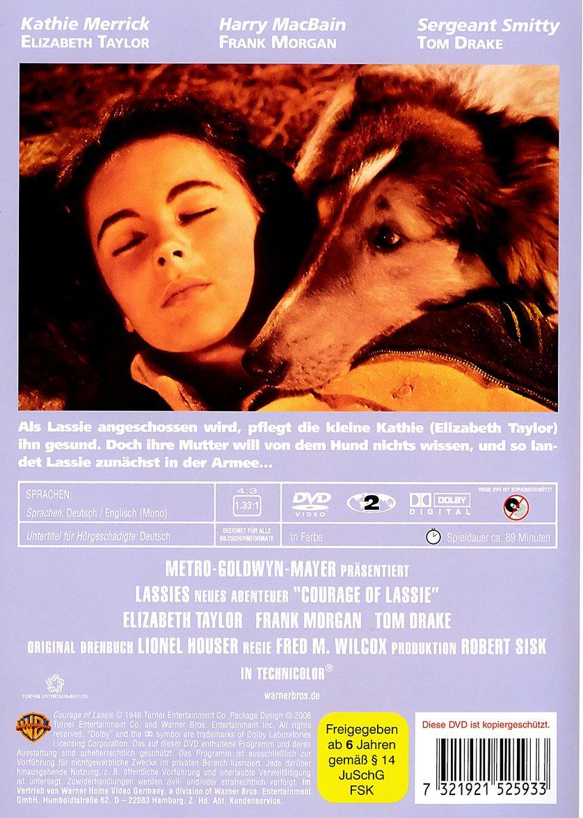 Lassie – Held Auf Vier Pfoten