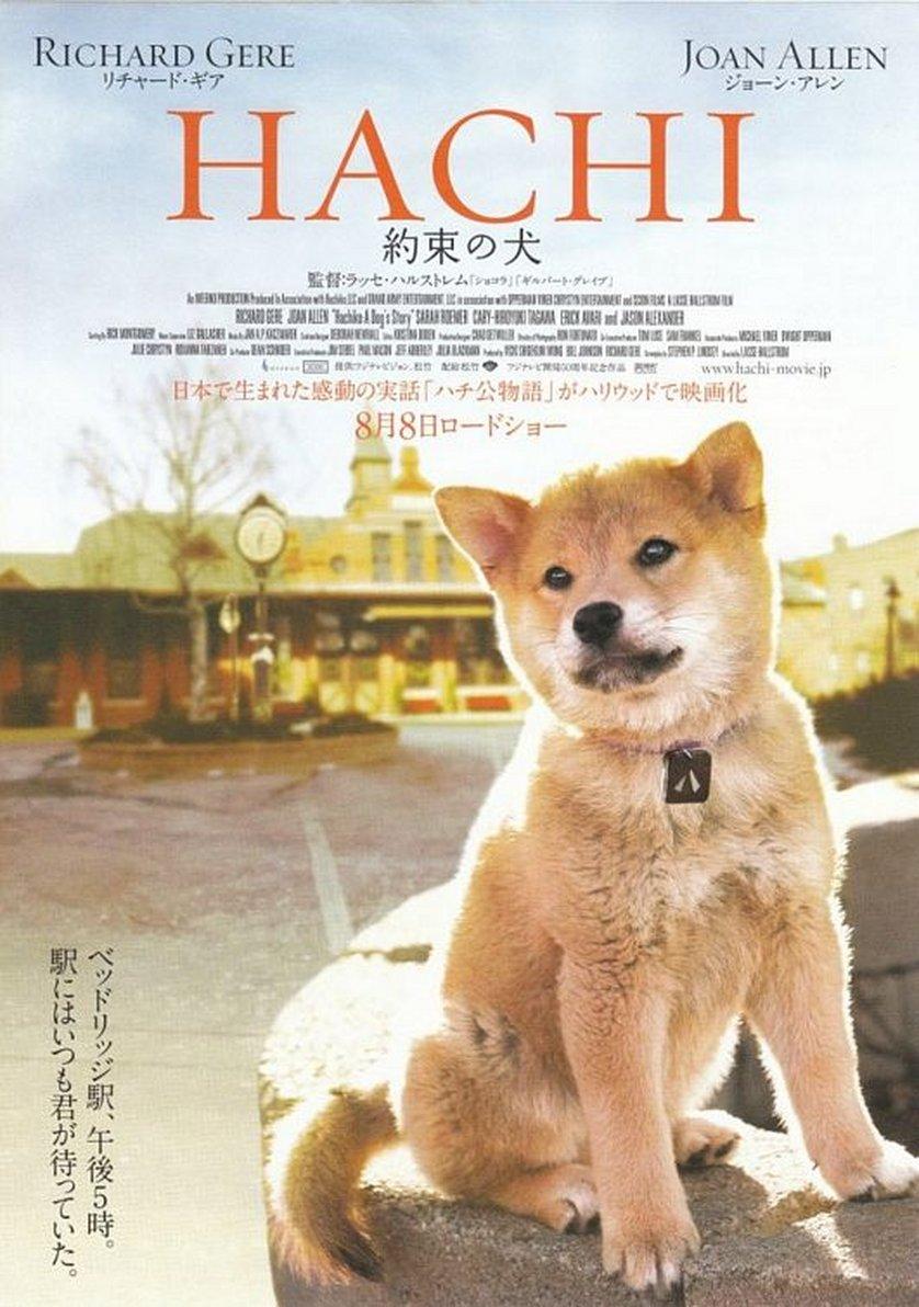 Hachiko: DVD oder Blu-ray leihen - VIDEOBUSTER.de