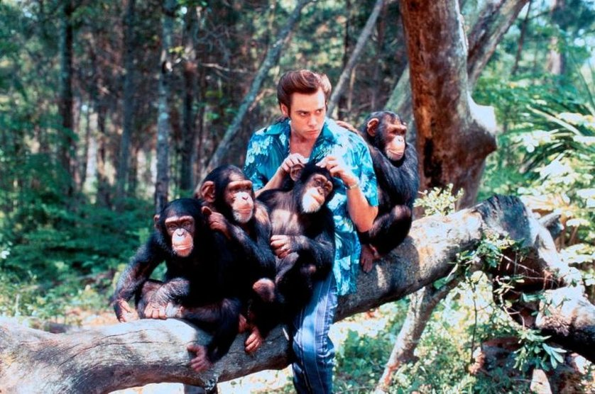 Ace Ventura When Nature Calls Online For Free
