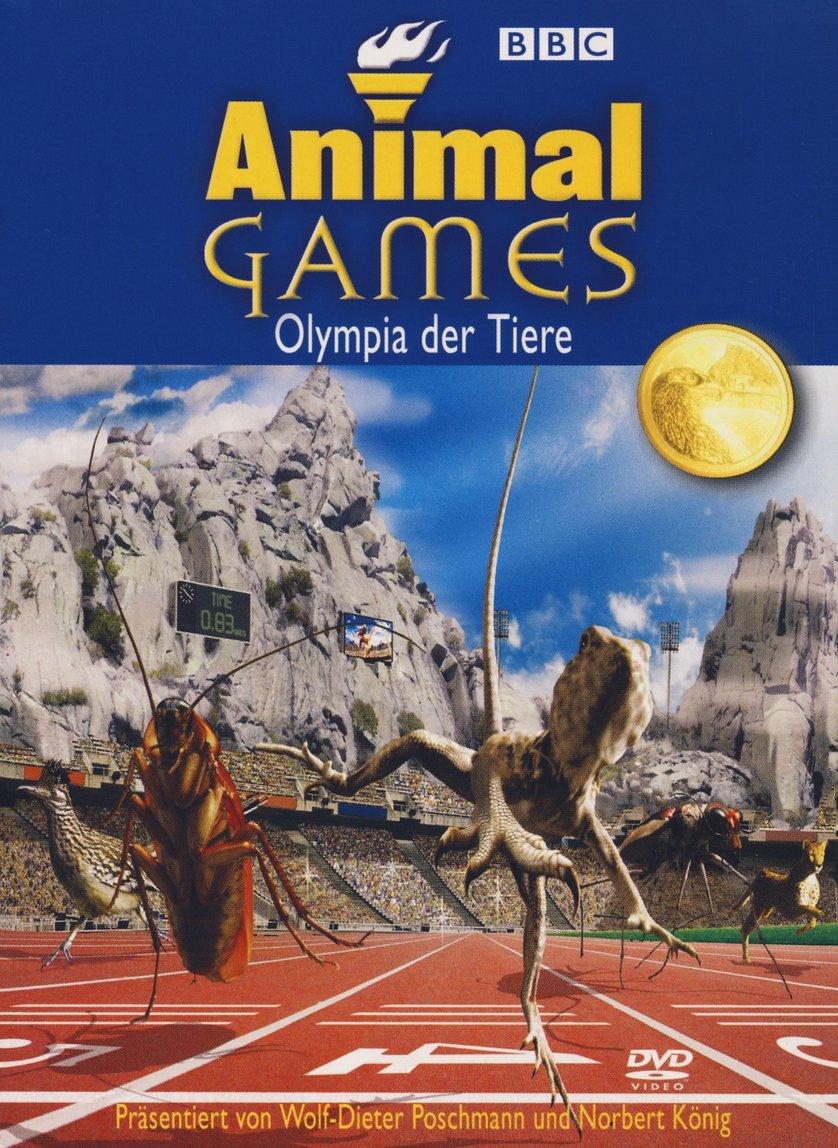 Animal Games: DVD oder Blu-ray leihen - VIDEOBUSTER.de  Animal Games: D...