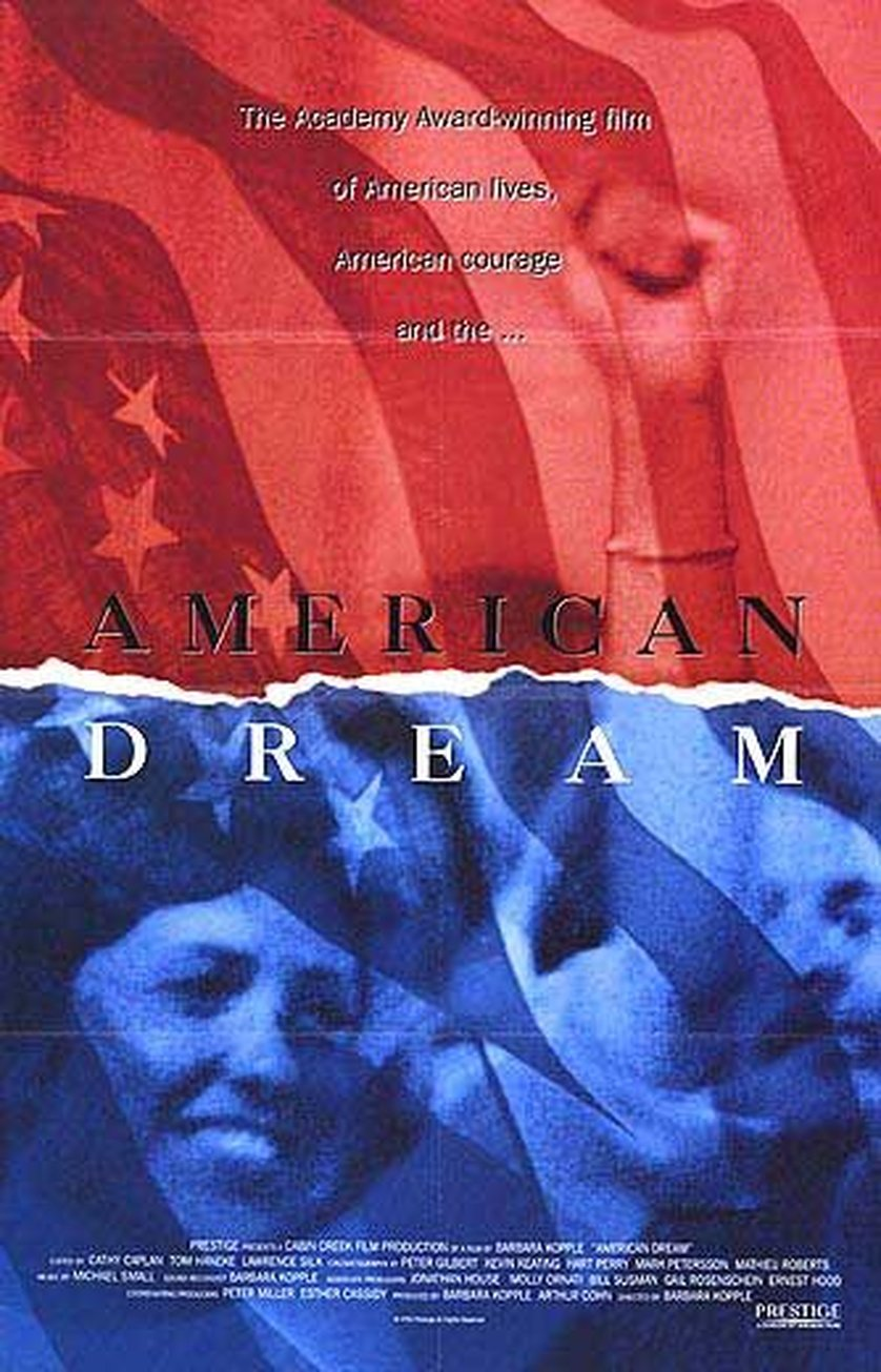 for the american dream The american dream teaches that determination brings success and happiness, but is that always the case.