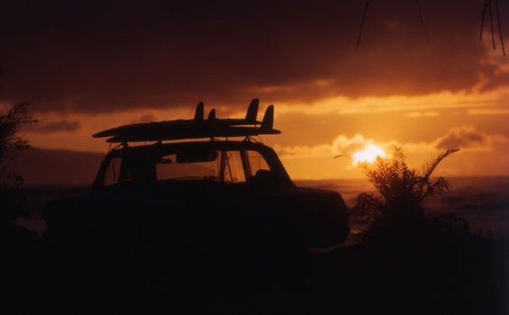 The Endless Summer 1