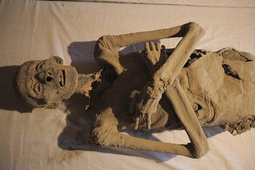 Der Mumienjäger - Staffel 1